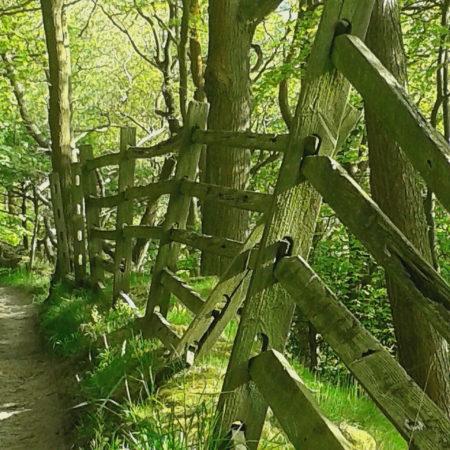 Packhorse Route, Ripponden, Martin King